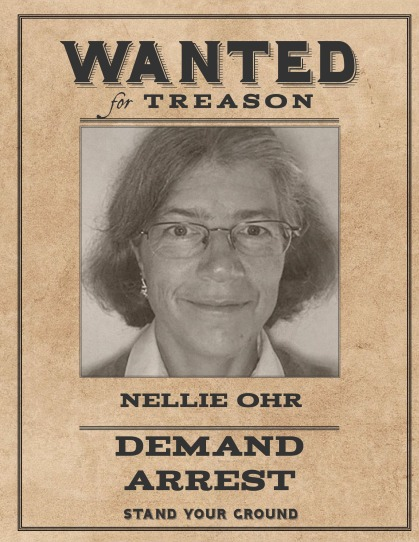 Wanted Nellie Ohr