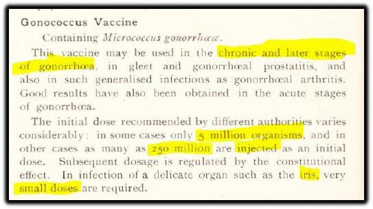 gonorrhea vacine.jpg