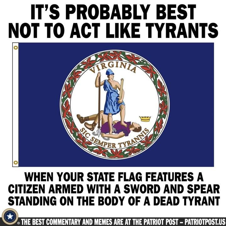 virginia tyrant gun control