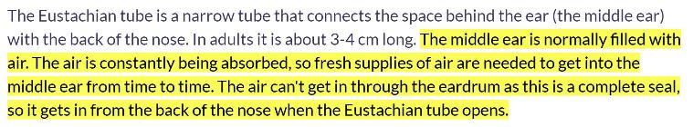 eustacian tube